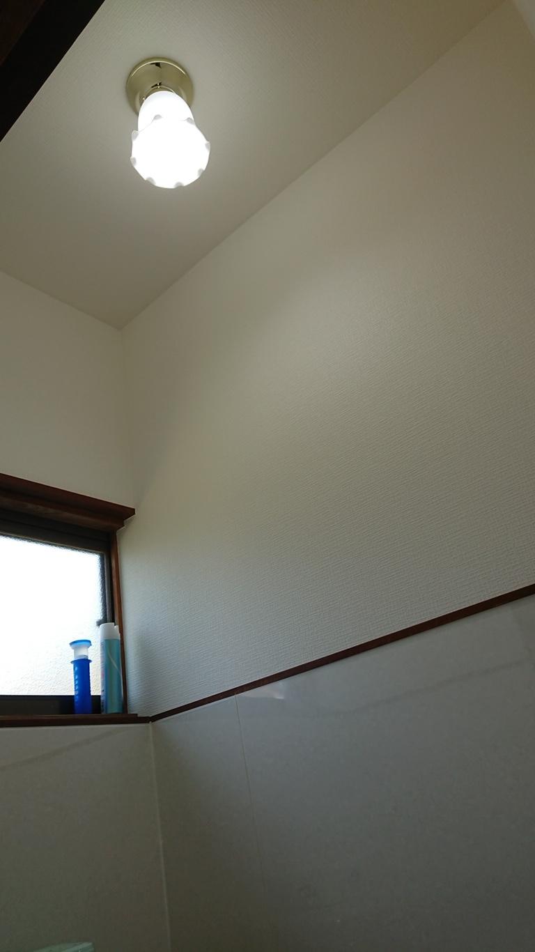 宮崎市K様邸トイレの壁をキッチンパネルでリフォーム