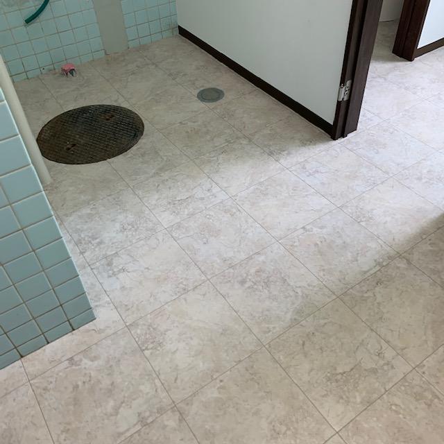 トイレのクッションフロア完成